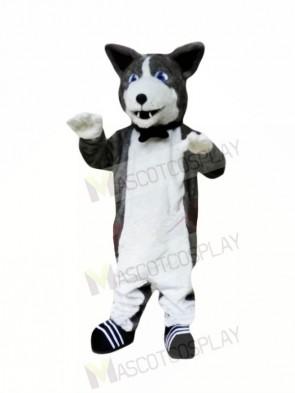 Cute Plush Husky Mascot Costumes Animal