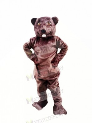 Happy Beaver Mascot Costumes Adult