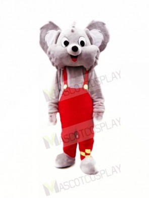 Cute Grey Koala Mascot Costumes