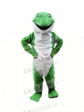Plush Green Frog Mascot Costumes Cartoon